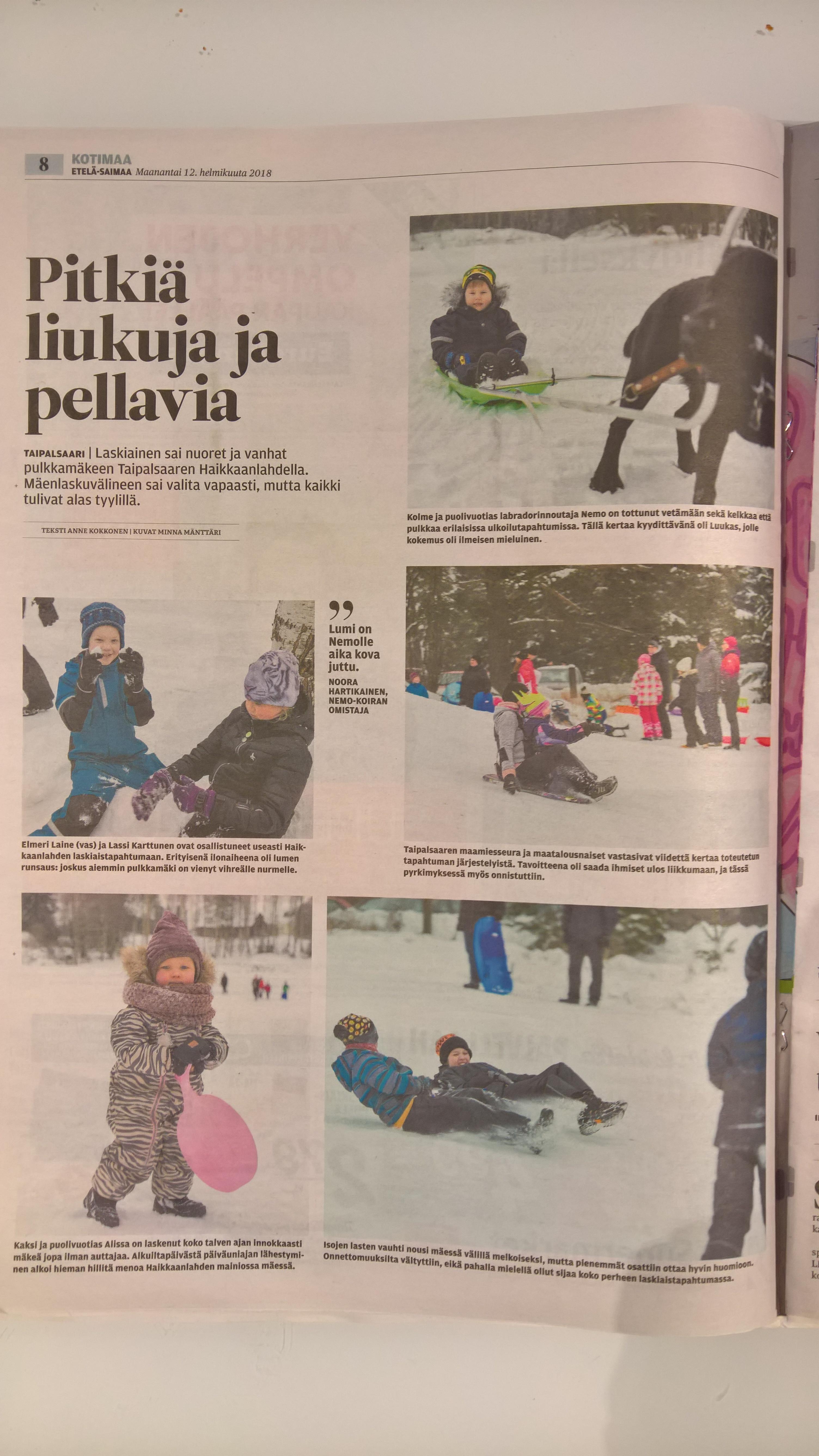 Etelä-Saimaa juttu 12.2.2018