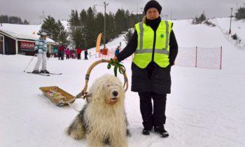 Winter fun— yhteinen talviulkoilu- ja laskettelupäivä Joutsenon Myllymäessä lauantaina 10.3.2018