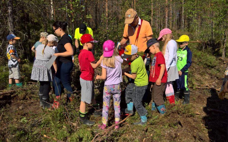 """""""Taipalsaaren koululaisten oman metsän hiilinielu"""" teeman toteutus huhti-toukokuun vaihteessa."""