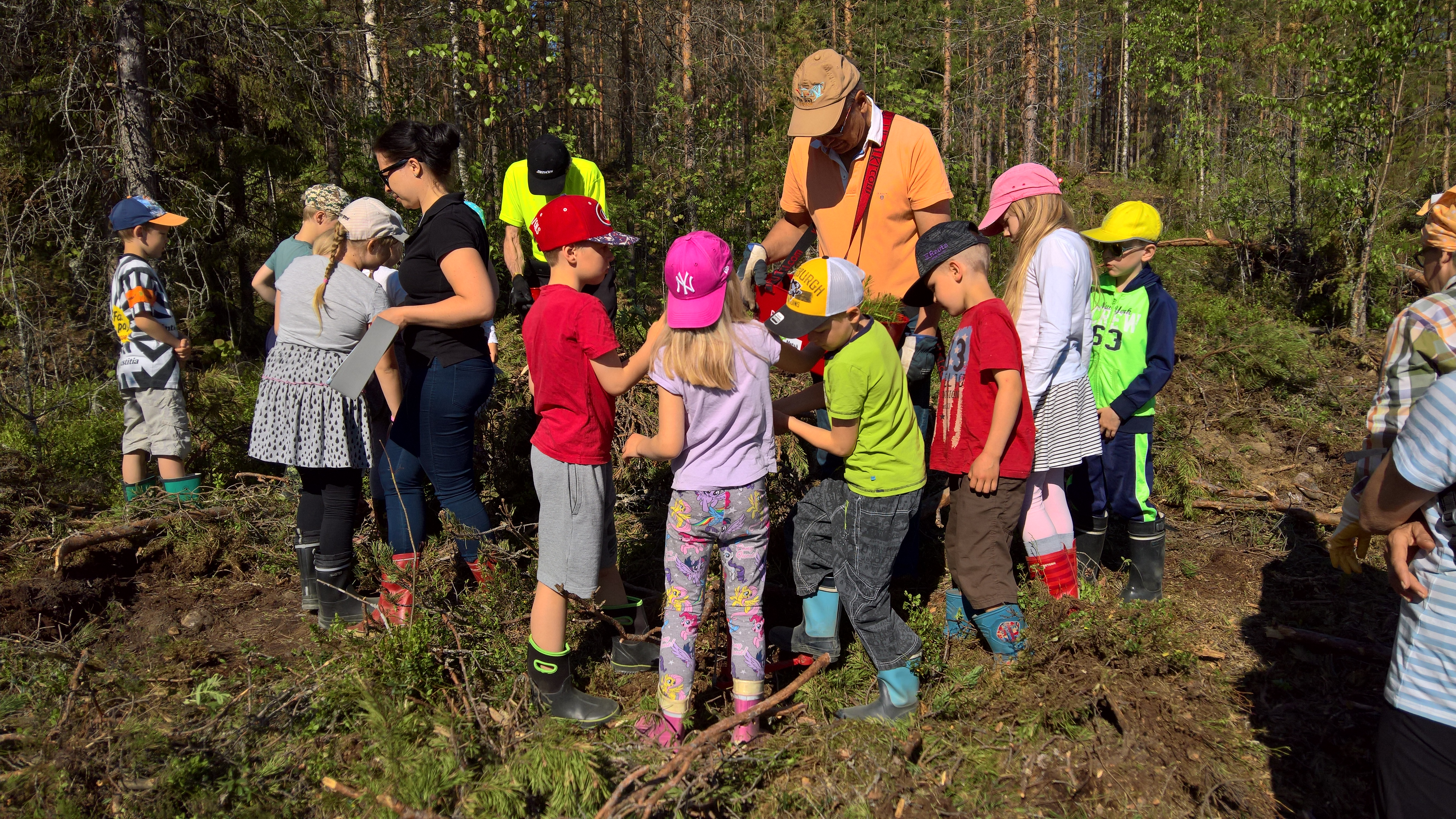 Asko Saikko opettaa istuttamaan taimia kirkonkylän 1-2 luokalle